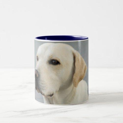 Golden Labrador Retriever Photograph Two-Tone Coffee Mug