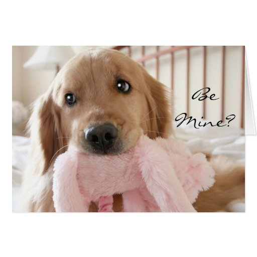 Golden Retriever Be Mine Valentines Day Card Zazzle