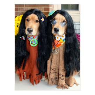 Golden Retriever Halloween Hippie Postcard Post Card