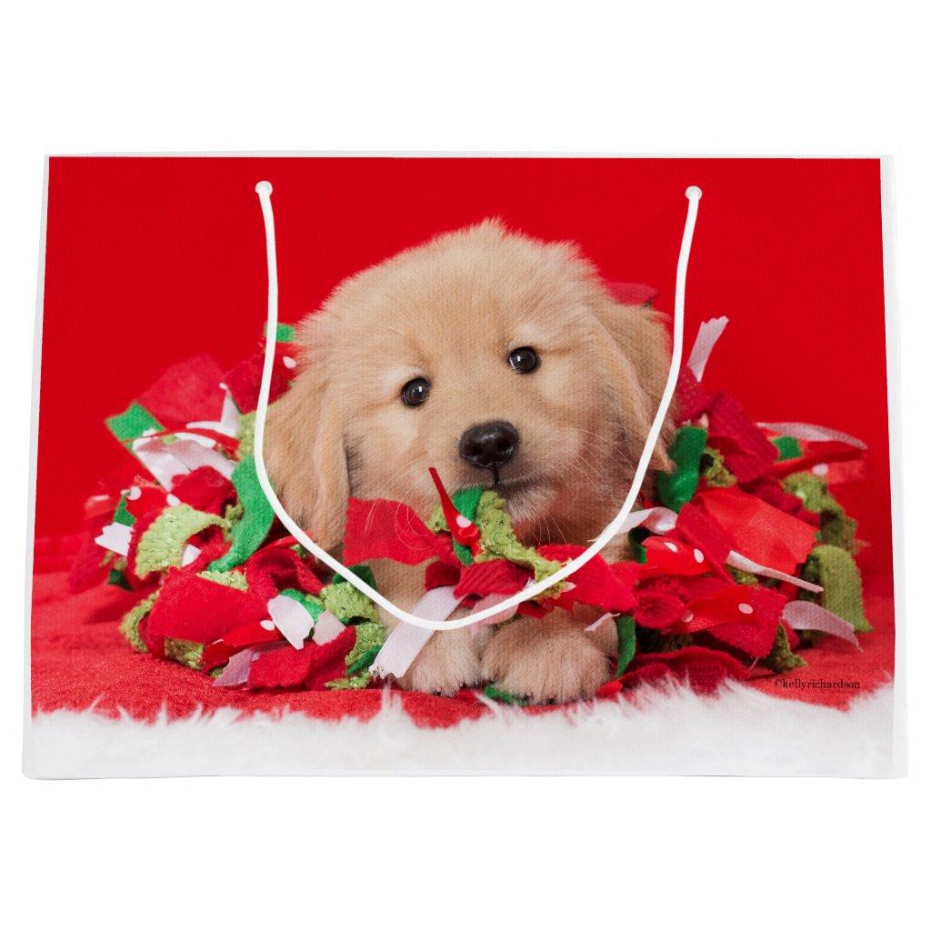 Golden Retriever Puppy Play in Holiday Garland