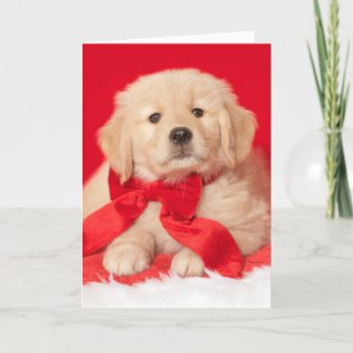 Golden Retriever Seasons Gurr-eetings Puppy Card