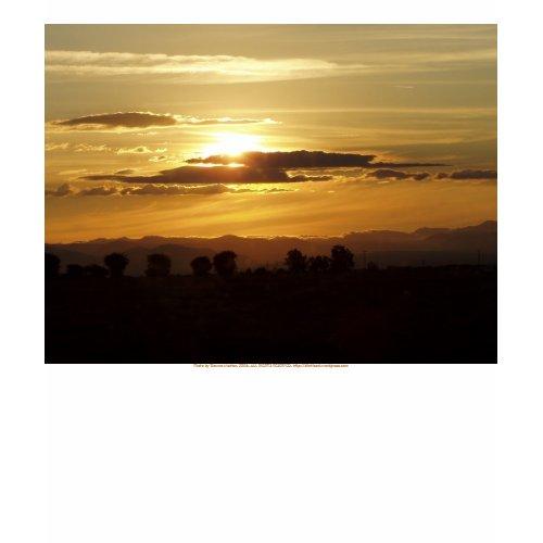 golden sunset shirt