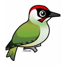woodpecker shirt