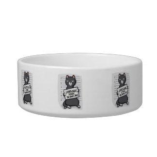 Grey cat - mugshot - cat cartoon bowl