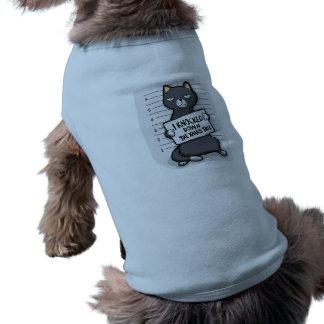 Grey cat - mugshot - cat cartoon shirt