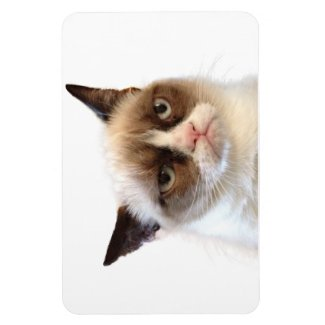 Grumpy Cat Flexible Magnet