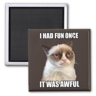 Grumpy Cat - I had fun once Magnets