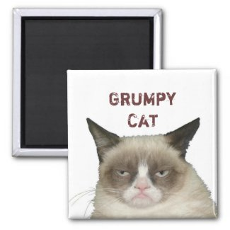 Grumpy Cat Magnet with Text