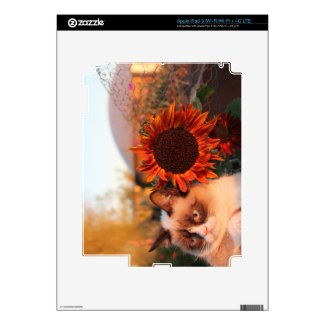 Grumpy Cat Sunflower iPad 3 Skin