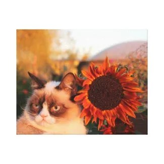 Grumpy Cat Sunflower on Canvas Stretched Canvas Prints