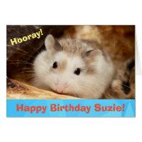Hammyville - Cute Hamster Happy Birthday Card