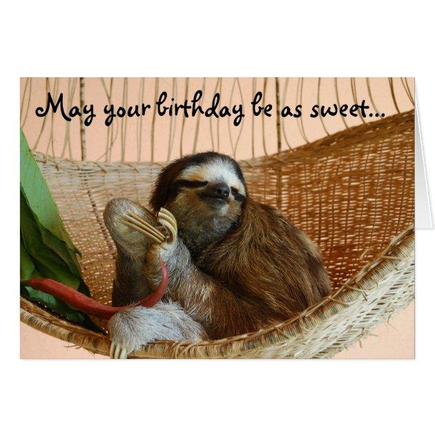 Happy Birthday Cute Sloth Card  Zazzlecom