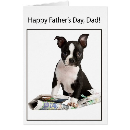 Happy Fathers Day From Boston Terrier Dog To Dad