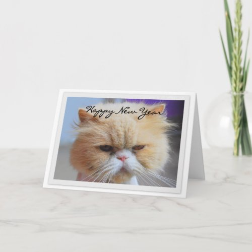 Happy New Year Persian Cat Humor card