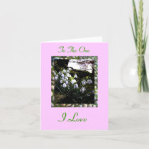 Happy St Valentine's Day with Snowdrops cards