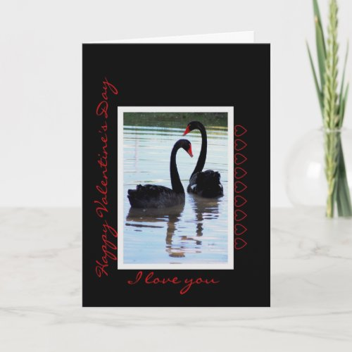Happy Valentine's Day Black Swans card