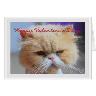 Happy Valentine's Day Persian Cat Humor Greeting Card
