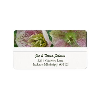 Hellebores Address Labels