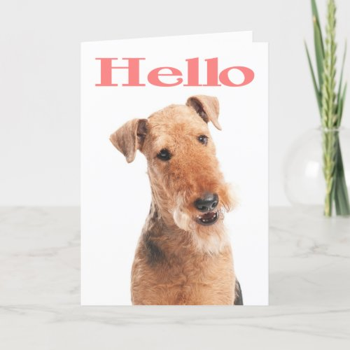 Hello Airedale Puppy Dog Greeting Card - Verse