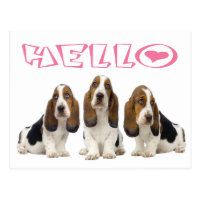 Hello Basset Hound Puppy Dog Pink Heart Postcard