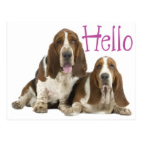 Hello Basset Hound Puppy Dog Purple Postcard