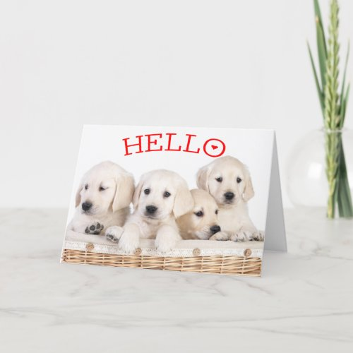 Hello White Labrador Retriever Puppy Dog Red Heart Card