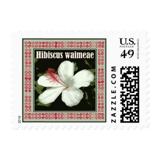 Hibiscus Waimeae from Hawaii Postage