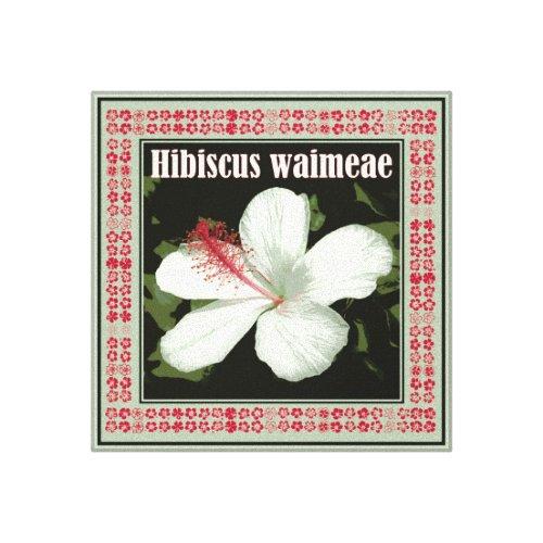 Hibiscus Waimeae Square Canvas Print