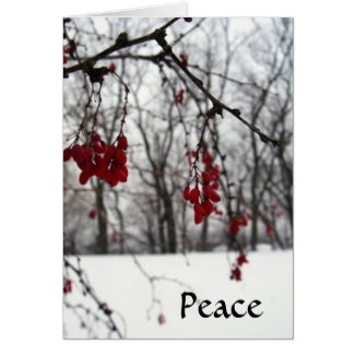 Holiday Note Card Peace