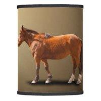 Horse Lamp Shades | Zazzle