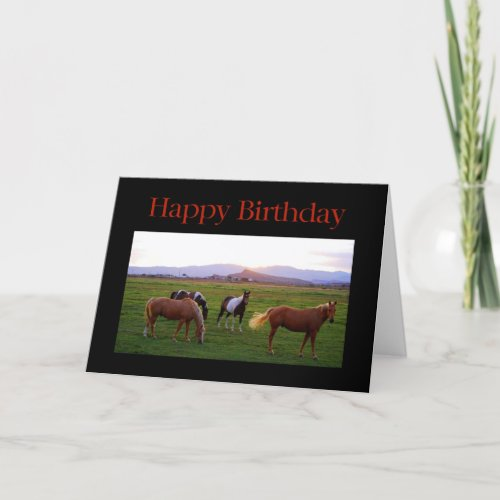 Horses at Sunset Happy Birthday card