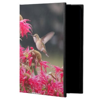 Hummingbird in Flight iPad Air Case