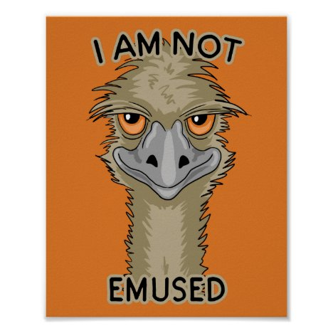 I Am Not Emused Funny Emu Pun | Orange Poster
