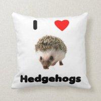 Hedgehog Pillows - Decorative & Throw Pillows | Zazzle