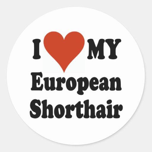I Love My European Shorthair Cat Merchandise Classic Round