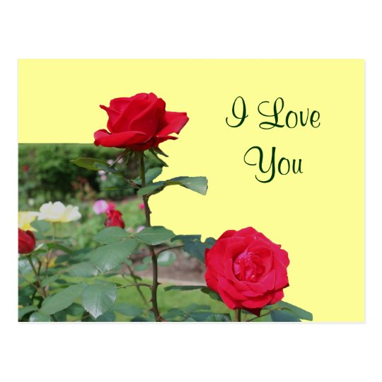 i love you red