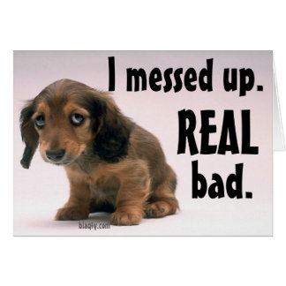 I Messed Up Greeting Cards Zazzle