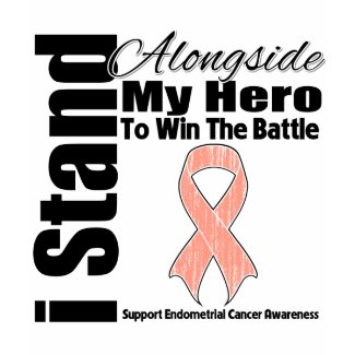 I Stand Alongside My Hero Endometrial Cancer shirt