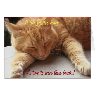 If life gets too heavy Inspirational Card cat 2