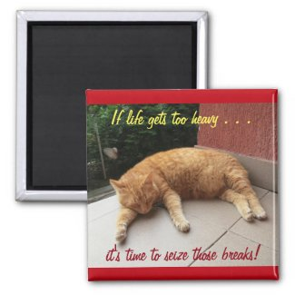 If life gets too heavy Inspirational Magnet (cat)