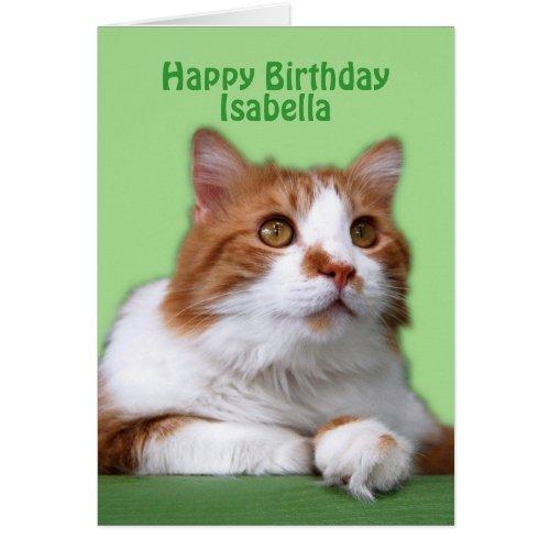 Isabella Happy Birthday Orange and White Cat Greeting Card