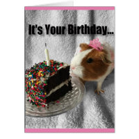 It's your birthday ...pig out card