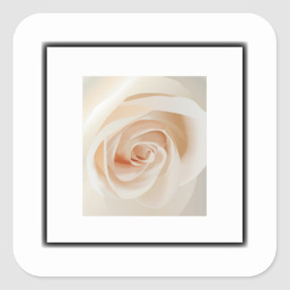 Ivory Rose Square Stickers