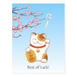 Japanese Lucky Calico Cat, Maneki Neko Postcard