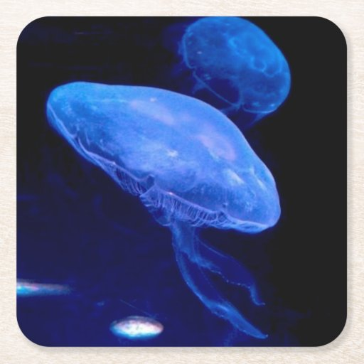 Jellyfish Coasters