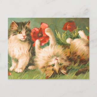 Kittens at Play Postcard postcard