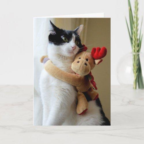 Kitty Christmas Hugs Greeting Card
