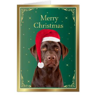Dog Christmas Cards Zazzle