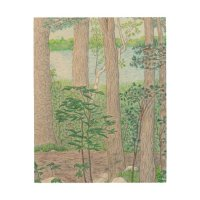 Lake with Woods Colored Pencil Drawing Wood Wall Art | Zazzle
