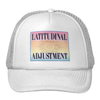 """Latitudinal Adjustment"" Mesh Hat"